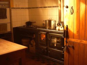 nemūrēta virtuves malkas plīts mēbeļu ieskauta